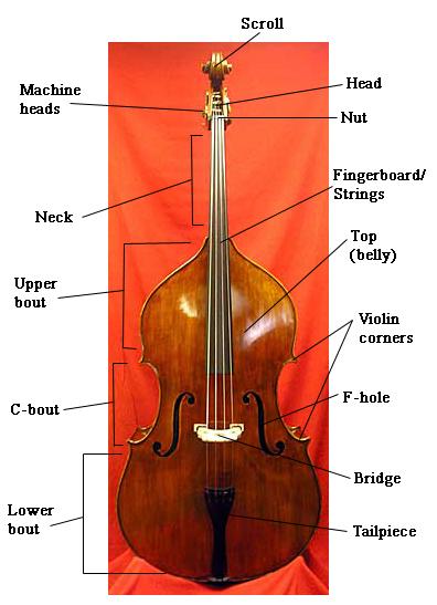 Bassdiagram