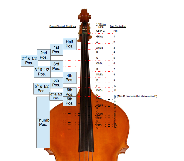 Bass Neck Position Numbers Rev B